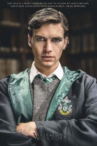 Voldemort: les origines de l'héritier affiche du film